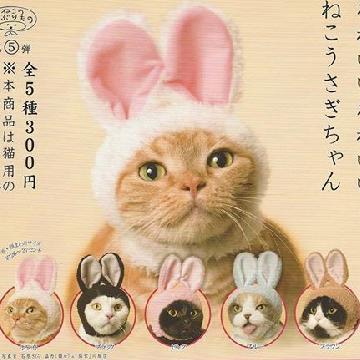 為主子戴上5款可愛兔耳啦!貓咪頭套扭蛋香港有得扭